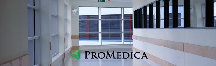 What services do members find on the ProMedica portal?